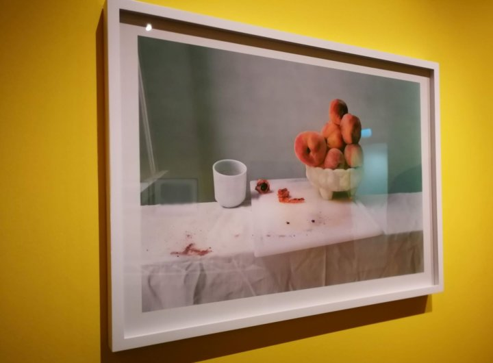 Laura Letinsky in Feast for The Eyes - The Photographers Gallery